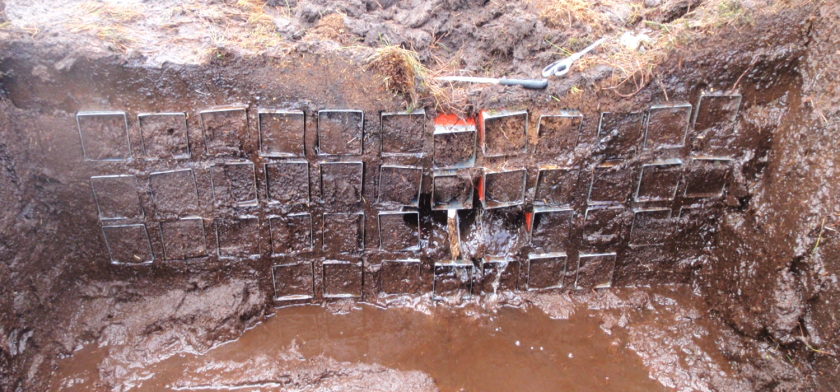 The excavated pipe and sampling cubes used to collect uncompressed blocks of peat